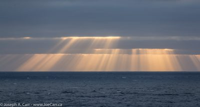 Crepuscular rays at sunrise over the Pacific Ocean