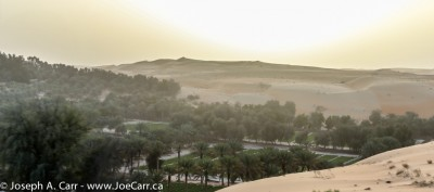 The Liwa Oasis at sunset