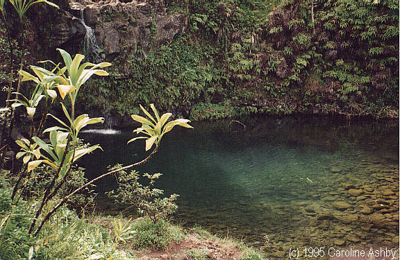 Beautiful tropical pools at Puaakaa State Park