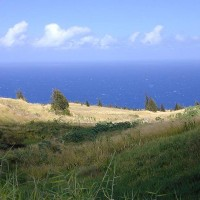 Contrast between the pasture land and the coastline near Kapulena