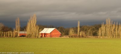 Red barn and green field at sunset near Tangent, Oreon